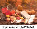 book with seasonal fruits and... | Shutterstock . vector #1149796241