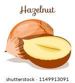 hazelnuts nut. hazelnut peeled...   Shutterstock .eps vector #1149913091