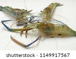 three giant freshwater prawns... | Shutterstock . vector #1149917567