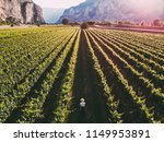 aerial view of traveler woman... | Shutterstock . vector #1149953891