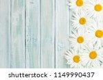 garden chamomile flowers on... | Shutterstock . vector #1149990437