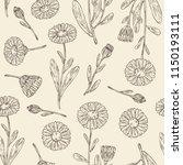 seamless pattern with calendula ... | Shutterstock .eps vector #1150193111