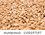 macro view of natural organic... | Shutterstock . vector #1150197197