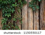wooden wall with virginia... | Shutterstock . vector #1150550117