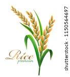 rice realistic vector... | Shutterstock .eps vector #1150564697