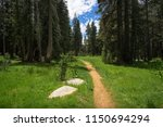 trees and dirt path to the lake ... | Shutterstock . vector #1150694294