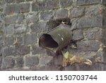 closeup photograph of a rusty...   Shutterstock . vector #1150703744