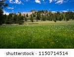 meadow flowers and butte high... | Shutterstock . vector #1150714514