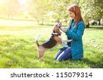 Stock photo girl playing with her beagle dog in autumn park 115079314