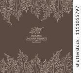background with wakame  undaria ... | Shutterstock .eps vector #1151055797