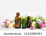 flowers and herbs essential oil ... | Shutterstock . vector #1151085491