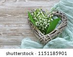 bouquet of lily of the valley... | Shutterstock . vector #1151185901