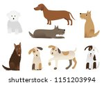 a set of various dogs | Shutterstock .eps vector #1151203994