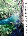 tha pom khlong song nam  krabi...   Shutterstock . vector #1151259611