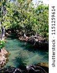 tha pom khlong song nam  krabi...   Shutterstock . vector #1151259614