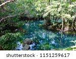 tha pom khlong song nam  krabi...   Shutterstock . vector #1151259617