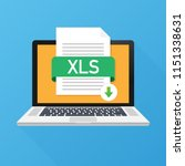download xls button on laptop...