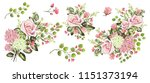 drawing with watercolor bouquet ... | Shutterstock . vector #1151373194
