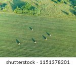 aerial view of a field with... | Shutterstock . vector #1151378201