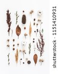 autumn composition. pattern... | Shutterstock . vector #1151410931