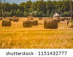 a hay in the field. before... | Shutterstock . vector #1151432777