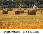 a hay in the field. before... | Shutterstock . vector #1151432801