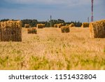 a hay in the field. before... | Shutterstock . vector #1151432804