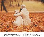 mistress hugging with dog.... | Shutterstock . vector #1151483237