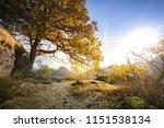 epic sunrise light at the peak... | Shutterstock . vector #1151538134