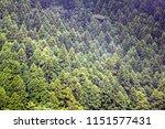 view around lake ashi  also...   Shutterstock . vector #1151577431