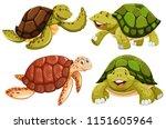 a set of sea turtle illustration | Shutterstock .eps vector #1151605964