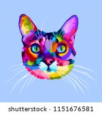 Colorful Cat Head Icon On Pop...