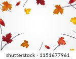 autumn background with bright... | Shutterstock .eps vector #1151677961
