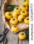 gold apple fruits diospyros...   Shutterstock . vector #1151699777