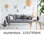 real photo of a scandi living... | Shutterstock . vector #1151793644
