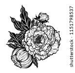 peony flower with leaves and... | Shutterstock .eps vector #1151798537