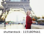 beautiful young french woman... | Shutterstock . vector #1151809661