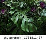 Tropical Leaves Monstera...