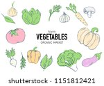 farm vegetables vector poster.... | Shutterstock .eps vector #1151812421