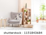 real photo of a bright living... | Shutterstock . vector #1151843684