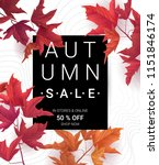 big autumn sale. fall sale... | Shutterstock .eps vector #1151846174