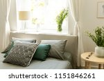 patterned green and grey... | Shutterstock . vector #1151846261