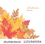 composition of multicolor... | Shutterstock .eps vector #1151969354