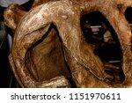 paris   august 7  2018  t rex...   Shutterstock . vector #1151970611