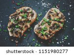 tasty sandwiches with grilled... | Shutterstock . vector #1151980277