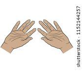 isolated vector illustration of ... | Shutterstock .eps vector #1152144257