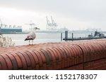 dockyard hamburg germany   Shutterstock . vector #1152178307