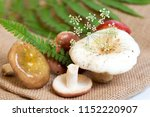 forest mushrooms on sacking.... | Shutterstock . vector #1152220907
