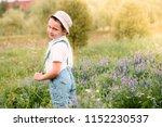 happy boy in the field. he... | Shutterstock . vector #1152230537
