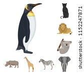 different animals cartoon icons ...   Shutterstock . vector #1152247871
